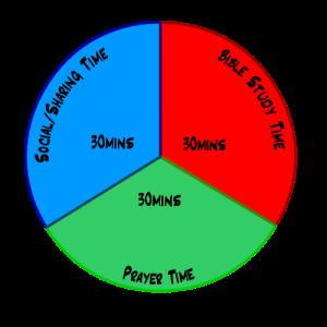 BS_pie_chart